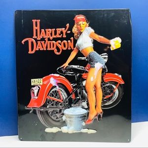 Harley Davidson motorcycles sign wash babe 15x13